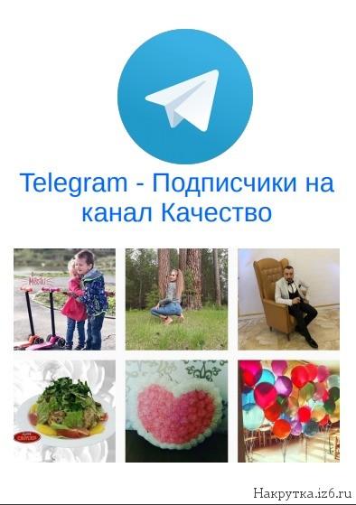 Подписчик на канал Telegram качество