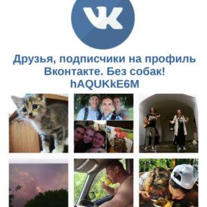 Друзья, подписчики на профиль Вконтакте. Без собак! hAQUKkE6M