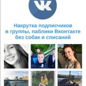 Накрутка подписчиков в группу, паблик Вконтакте